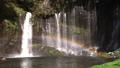 Shiraito Falls Rainbow 80421216