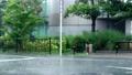 突然降り出した土砂降りの雨と道路 81120914