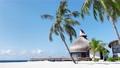 The coastline of the ocean. Maldives, June 2021  81182818