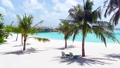 The coastline of the ocean. Maldives, June 2021  81182819