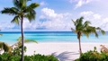 The coastline of the ocean. Maldives, June 2021  81182875