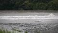 氾濫危険水位 81479150