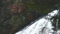 横から眺める豪快な湯滝の流れと紅葉のコラボ情景@奥日光、栃木 81547218