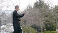 公園で太極拳を舞う中国人男性(全身) 81615401
