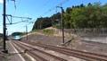 東北新幹線E5系(10両編成) 81616520