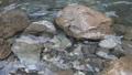 秋川渓谷の川の水スロー 81820607