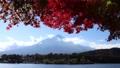 秋の紅葉と富士山 81822217