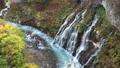 秋の北海道 しらひげの滝 81822218