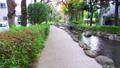 東京江戸川区の都市風景 小松川境川 親水公園 82025258
