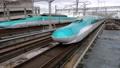 大宮駅に到着する北海道新幹線H5系(秋田新幹線E6系こまち併結) 82056606