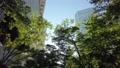 Cityscape of skyscrapers in Nishi Shinjuku, Shinjuku-ku, Tokyo 82271083