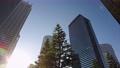 Cityscape of skyscrapers in Nishi Shinjuku, Shinjuku-ku, Tokyo 82271085