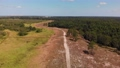 Florida park with trails and forest. Aerial view. 82648750