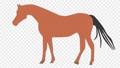 首を上下に動かす可愛い馬 82978690